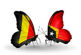 Butterflies with Belgium and East Timor flags on wings — Stock Photo