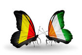 Butterflies with Belgium and Cote Divoire flags on wings — Stock Photo