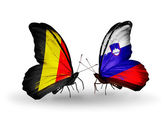 Butterflies with Belgium and Slovenia flags on wings — Stock Photo