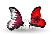 Fjärilar med qatar och Albanien flaggor på vingar — Stockfoto