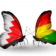 Foto Stock: Butterflies with Bahrain and Boliviflags on wings