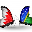 Foto Stock: Butterflies with Bahrain and Solomon Islands flags on wings