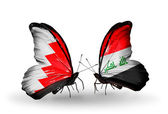 Butterflies with Bahrain and Iraq flags on wings — Stock Photo