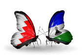 Butterflies with Bahrain and Lesotho flags on wings — Stock Photo