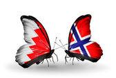 翼の上のバーレーンとノルウェーのフラグと蝶 — ストック写真