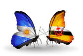 Butterflies with Argentina and Brunei flags on wings — Stock Photo