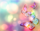 Background with butterflies — Stock Photo