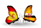 Butterflies with Spain and Brunei flags on wings — Stock Photo