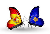 Butterflies with Spain and Kosovo flags on wings — Stock Photo