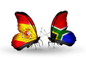 Butterflies with Spain and South Africa flags on wings — Stock Photo