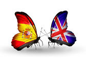 Butterflies with Spain and UK flags on wings — Stock Photo