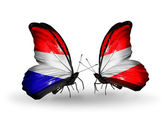 Butterflies with Holland and Austria flags on wings — Stock Photo