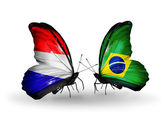 Butterflies with Holland and Brazil flags on wings — Stock Photo