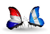 Butterflies with Holland and Guatemala flags on wings — Stock Photo