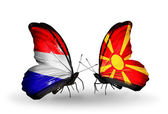 Butterflies with Holland and Macedonia flags on wings — Stock Photo