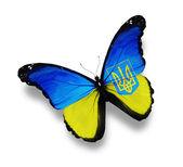 Ukrainian flag butterfly — Stock Photo