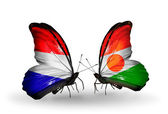 Butterflies with Holland and Niger flags on wings — Stock Photo