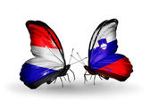 Butterflies with Holland and Slovenia flags on wings — Stock Photo