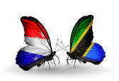 Butterflies with Holland and Tanzania flags on wings — Stock Photo