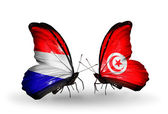 Butterflies with Holland and Tunisia flags on wings — Stock Photo