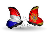 Butterflies with Holland and Montenegro flags on wings — Stock Photo