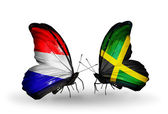 Butterflies with Holland and Jamaica flags on wings — Stock Photo