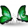 Butterflies with Saudi Arabiand Pakistflags on wings — Stockfoto #41393595