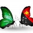 Butterflies with Saudi Arabiand PapuNew Guineflags on wings — Stockfoto #41393617