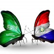 Butterflies with Saudi Arabiand Paraguay flags on wings — Stockfoto #41393625