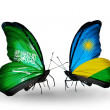 Butterflies with Saudi Arabiand Rwandflags on wings — Stockfoto #41393663