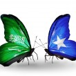 Butterflies with Saudi Arabiand Somaliflags on wings — Stockfoto #41393739