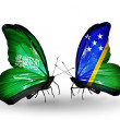 Butterflies with Saudi Arabiand Solomon Islands flags on wings — Stockfoto #41393741