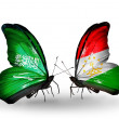 Butterflies with Saudi Arabiand Tajikistflags on wings — Stockfoto #41393751
