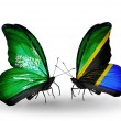 Butterflies with Saudi Arabiand Tanzaniflags on wings — Stockfoto #41393763