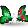 Butterflies with Saudi Arabiand Turkmenistflags on wings — Stockfoto #41393811