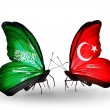 Butterflies with Saudi Arabiand Turkey flags on wings — Stockfoto #41393835
