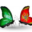 Butterflies with Saudi Arabiand Montenegro flags on wings — Stockfoto #41393851
