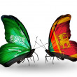 Butterflies with Saudi Arabiand Sri Lankflags on wings — Stockfoto #41393883