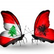 Butterflies with Lebanon and Albaniflags on wings — Stockfoto #41393951