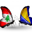 Butterflies with Lebanon and Bosniand Herzegovinflags on wings — Stockfoto #41394035