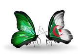 Butterflies with Saudi Arabia and Algeria flags on wings — Stock Photo