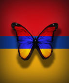 Austrian flag butterfly — Stock Photo