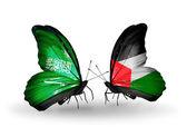翼の上のパレスチナ フラグとサウジアラビアの蝶 — ストック写真