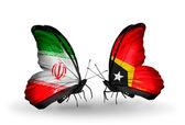 Två fjärilar med flaggor av förbindelserna mellan iran och Östtimor — Stockfoto