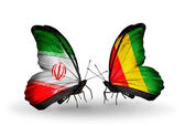 Two butterflies with flags of relations Iran and Guinea — Zdjęcie stockowe