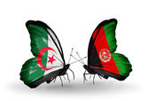 Two butterflies with flags of relations Algeria and Afghanistan — Stock Photo