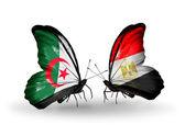 Zwei Schmetterlinge mit Flaggen der Beziehungen, Algerien und Ägypten — Stockfoto
