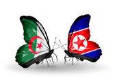 アルジェリア ・北朝鮮関係のフラグを持つ蝶 2 — ストック写真