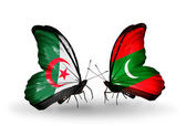 Två fjärilar med flaggor av förbindelserna mellan algeriet och maldiverna — Stockfoto