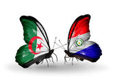 Two butterflies with flags of relations Algeria and Paraguay — Zdjęcie stockowe